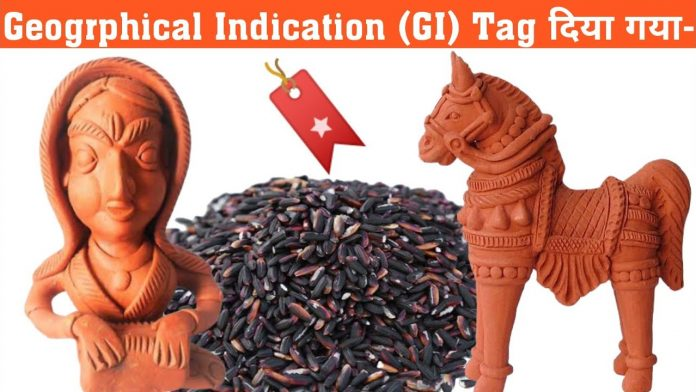 Gorakhpur Terracotta And Manipur's Chak-Hao Gets GI Tag Recently